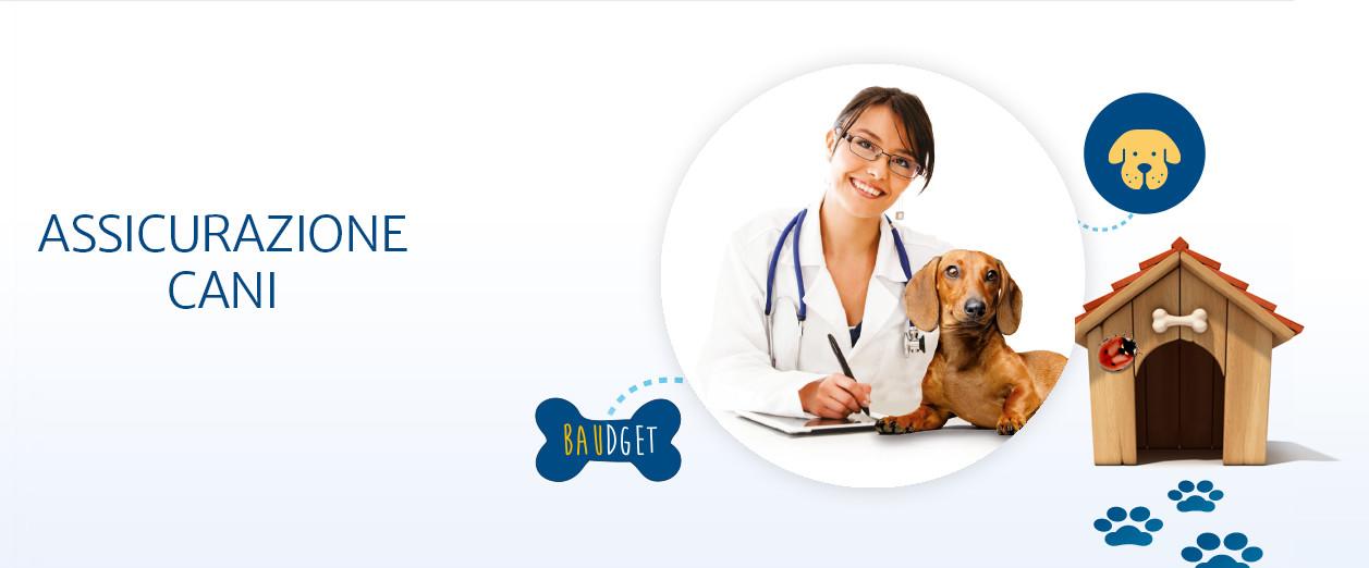 assicurazione online cane Baudget